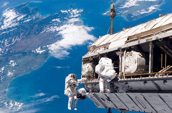 На внешней обшивке МКС найдена жизнь