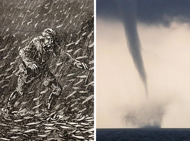 9 аномалий, которые доказывают, что природа заткнет за пояс любого фантаста