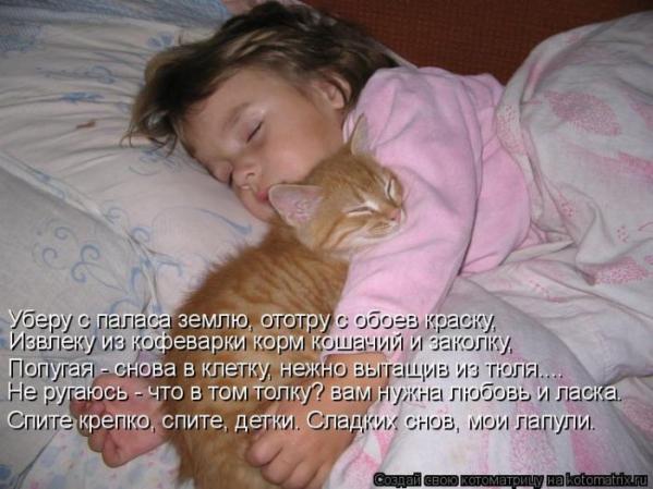 Любовь котЭ