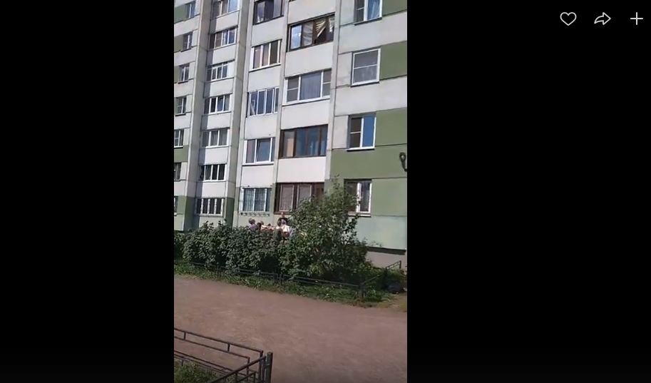 В Петербурге мужчина спас ребенка, чуть не выпавшего с девятого этажа