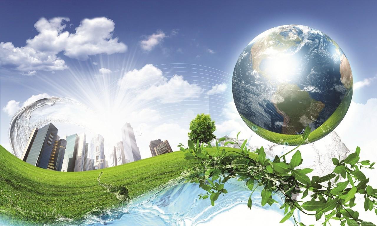 Важность и методы экологического воспитания детей всех возрастов