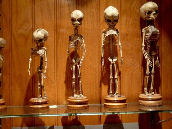 Самые страшные музеи из разных стран мира