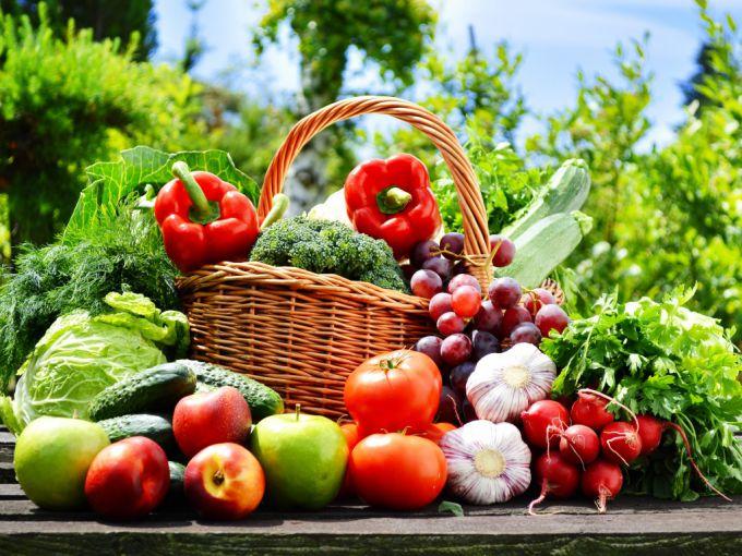Чем подкормить овощные культ…