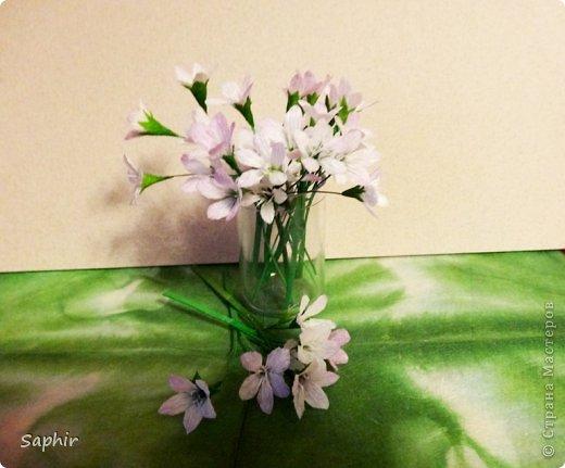 Мастер-класс Бумагопластика Маленькие цветочки из бумаги Кристал  Бумага гофрированная фото 13
