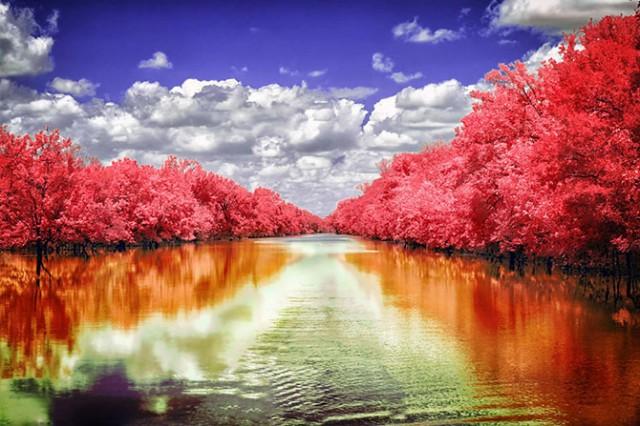 Невероятные инфракрасные фотографии
