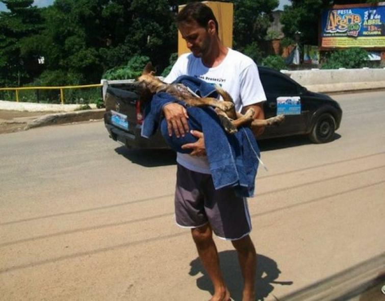 Уилсон Мартинс Коутиньо Wilson Martins Coutinho, спасение собаки, Флоренцо, собака личинки паразиты