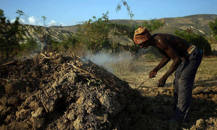 Торговля древесным углем на Гаити