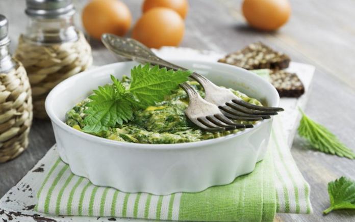 Открываем сезон: 21 рецепт из майской крапивы