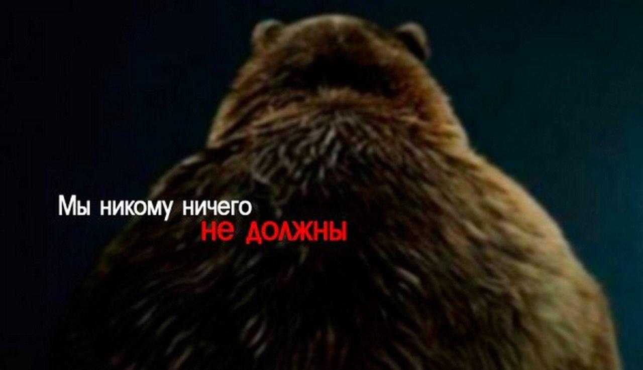 Юлия Витязева: Россия никому…