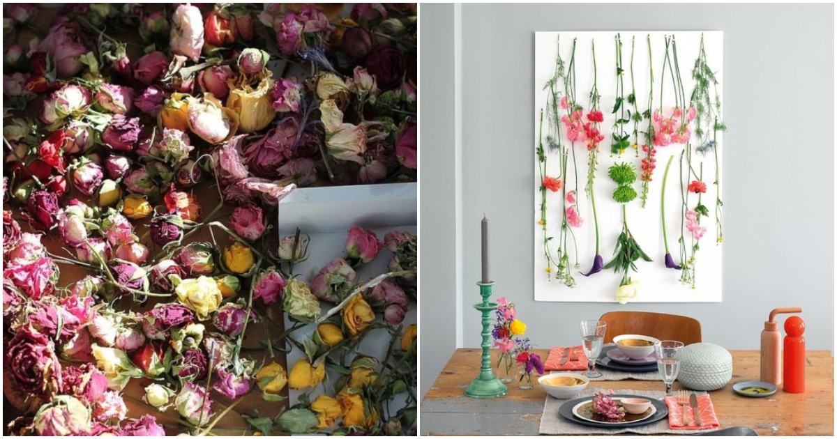 Прекрасное дополнение к интерьеру: правильная засушка летних цветов