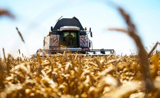 Битва за урожай-2018: Украин…