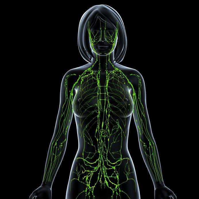 Очищение лимфатических узлов и протоков