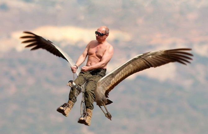 Шарий против Путина