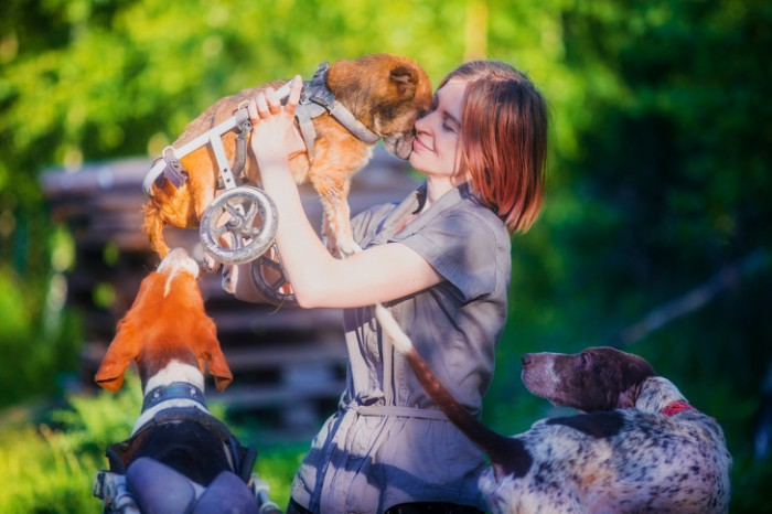 Elite Moscow Photographer Quits Her Career To Create A Forest Sanctuary For 100 Sick Dogs