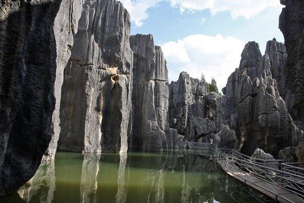 Застывший в камне: карстовый лес Шилинь в Китае