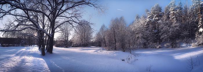 Зимний этюд. / Фото: Юлия Войнич.
