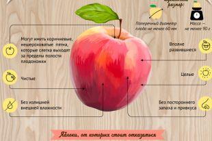Как выбирать яблоки? Инфографика