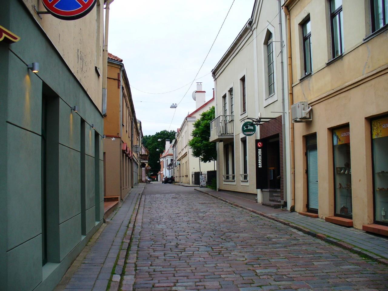 Безвиз в Литве.
