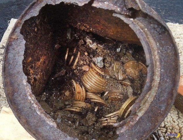 Любопытный пес сделал хозяев счастливыми обладателями клада золотых монет количеством 1427 штук