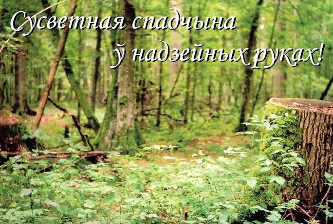 Открытки поздравление с днем лесного работника6