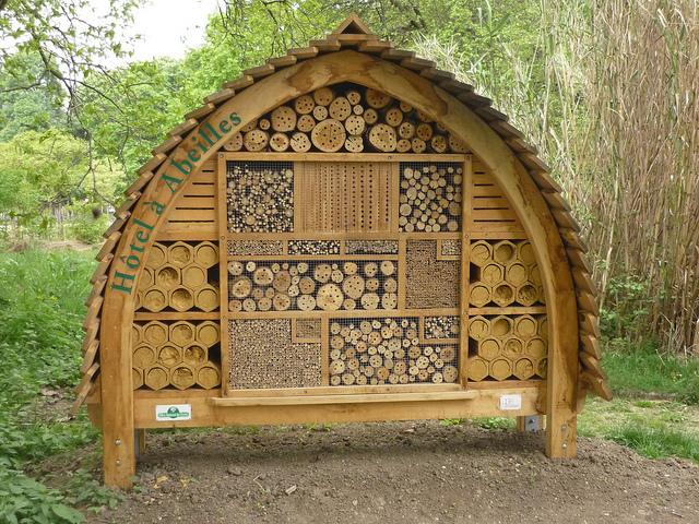 Лучшие отели для пчел