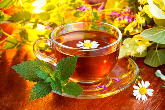 Польза травяных чаев для здо…