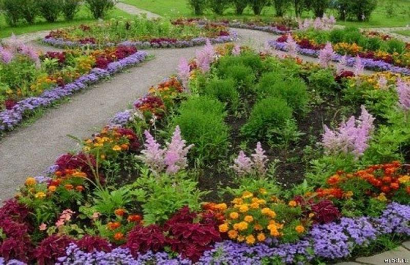 Идеи для клумбы в саду - фото - Ландшафтный дизайн - Статьи о растениях - ДАЧА - питомник декоративных растений и садовый центр