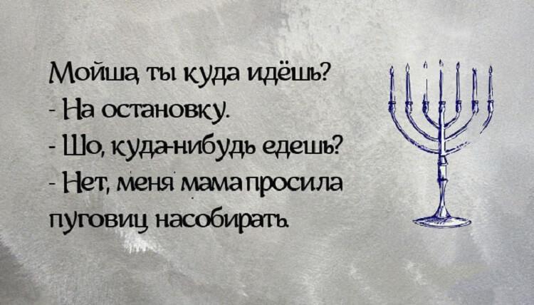 14 смешных открыток, посвященных евpейской маме