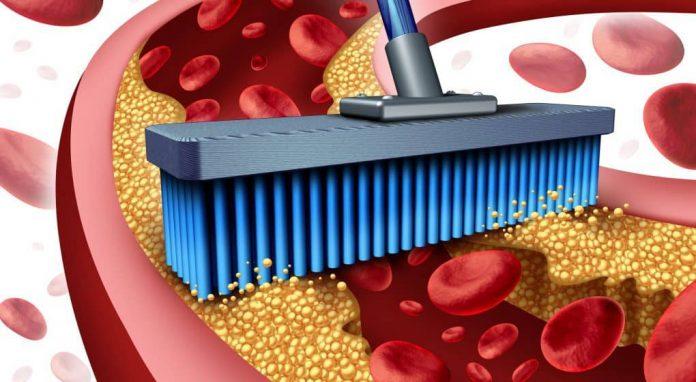 10 продуктов, которые очищают артерии