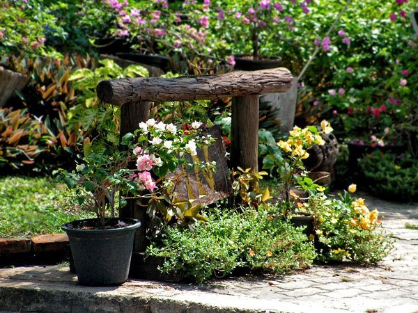 Ландшафтный дизайн в картинках — фото идеи красивых уголков сада