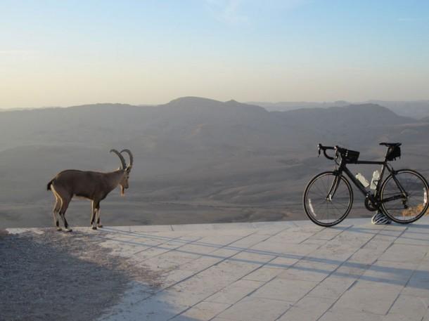 ПО ГОРОДАМ И СТРАНАМ. Необычный отдых в Израиле