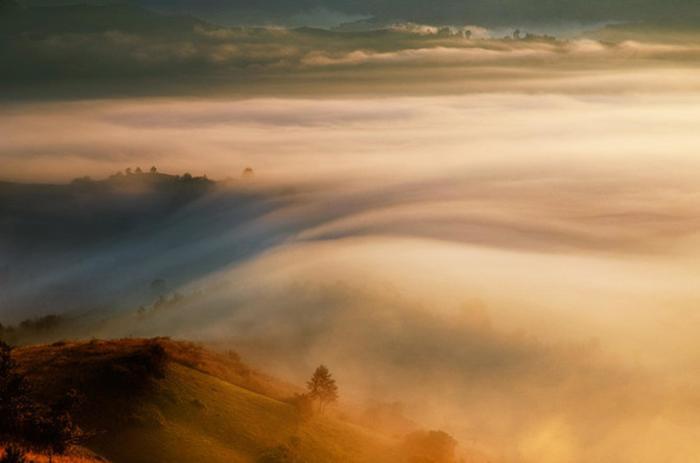 В объятиях тумана. Автор: Cornel Pufan.