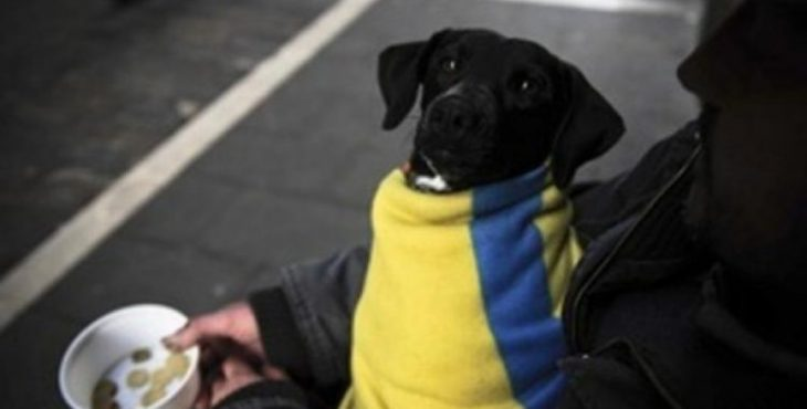 Более 60% украинцев не могут оплатить услуги ЖКХ