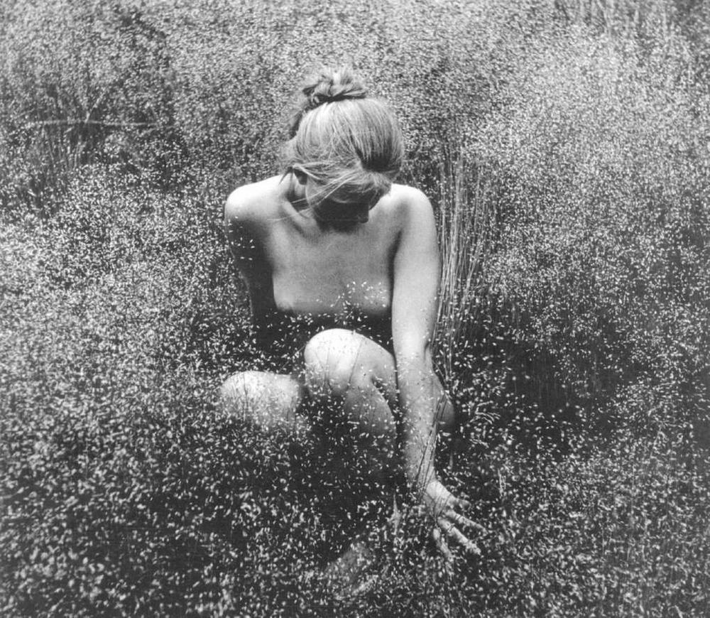 «Цветы среди цветов» Римантаса Дихавичюса – первые фотографии ню в СССР 6