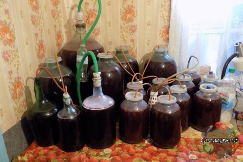 Домашнее вино из варенья – легко и просто!