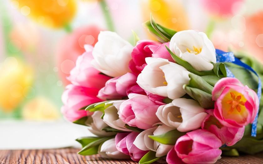 тюльпаны, букет, бутоны