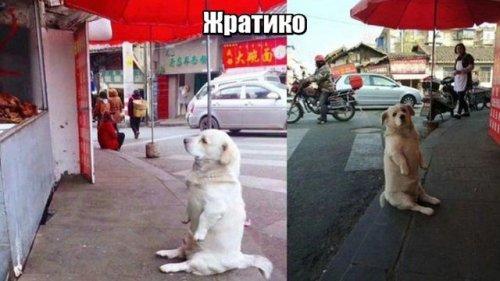Подборка приколов в фотограф…