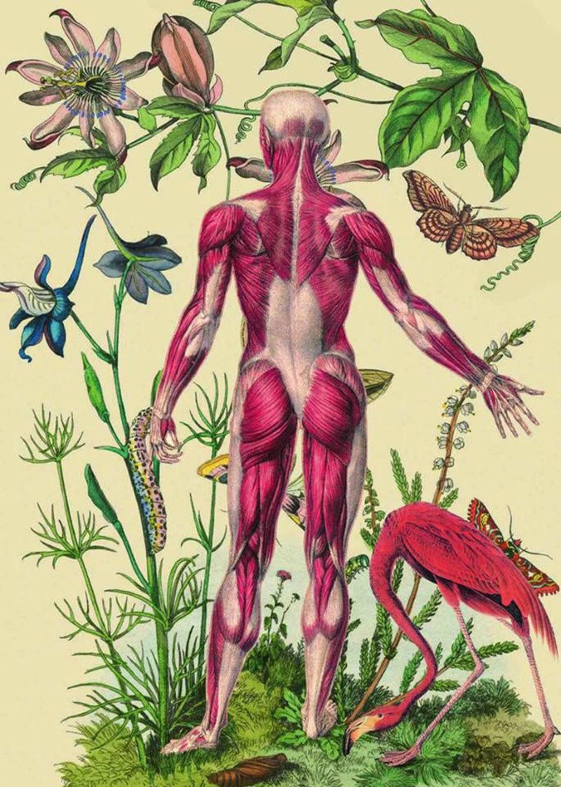 Кожных заболеваний нет — какие болезни проявляются на коже