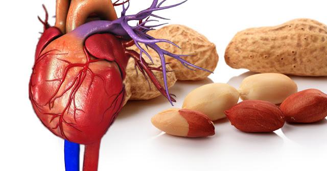 6 преимуществ арахиса для зд…