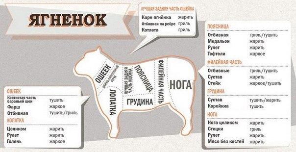 http://mtdata.ru/u18/photoA92C/20719453554-0/original.jpg