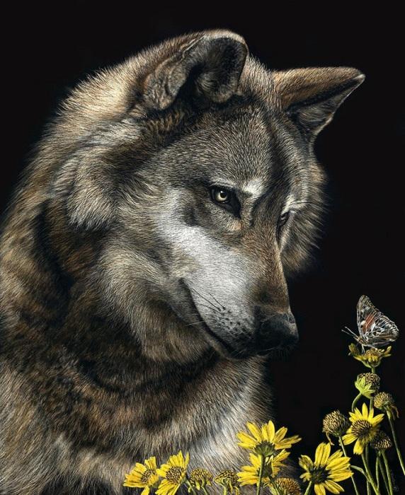 Реалистичные портреты животных от Cathy Sheeter