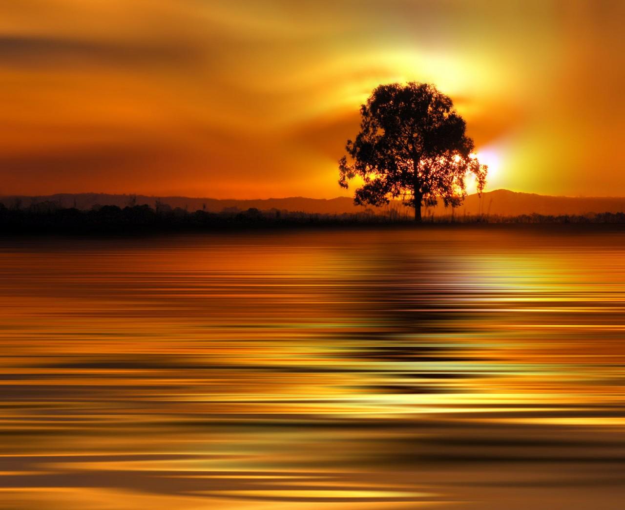 Фотография Golden Sunset автор Josep Sumalla на 500px