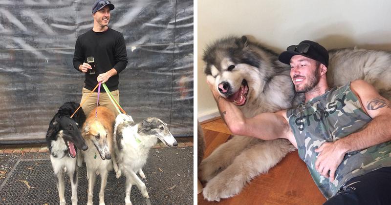 Австралиец мечтает спасти всех собак на земле