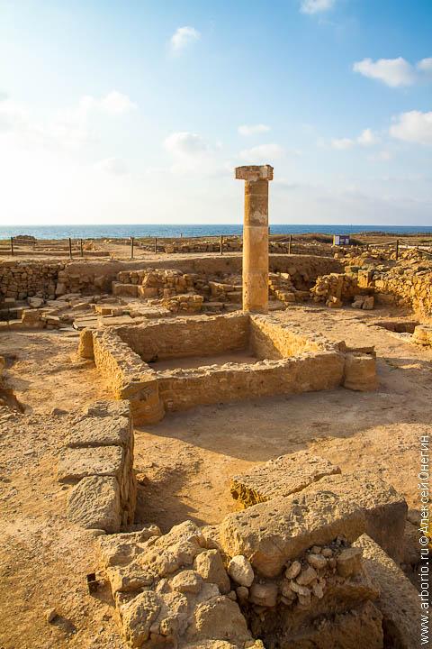 cyprus 34 Мозаики Пафоса   Пафос, Кипр