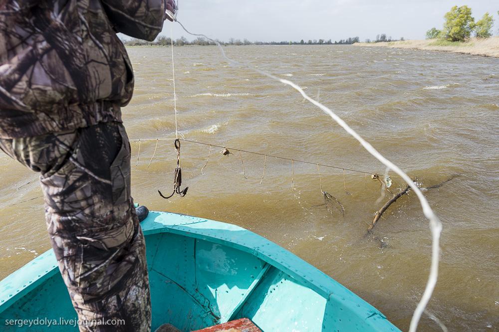 коса для рыбалки видео