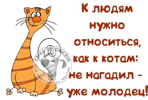 http://mtdata.ru/u18/photoB426/20484786521-0/original.jpg