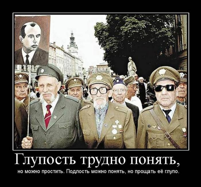 Донецк – чем отличается человек от животного и уроки истории