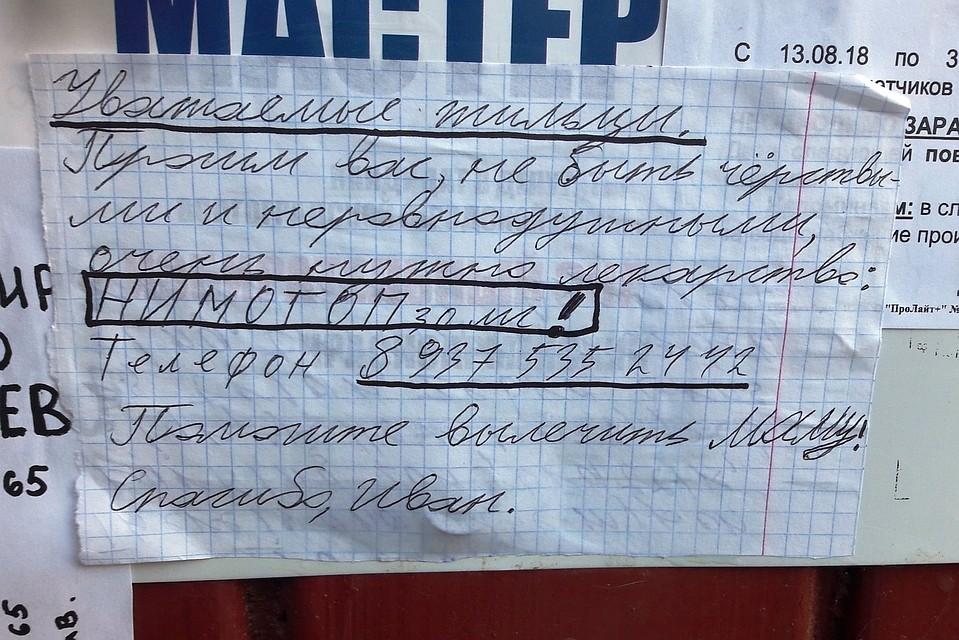 «Помогите вылечить маму!»: шестиклассник из Волгограда написал крик о помощи на подъездах