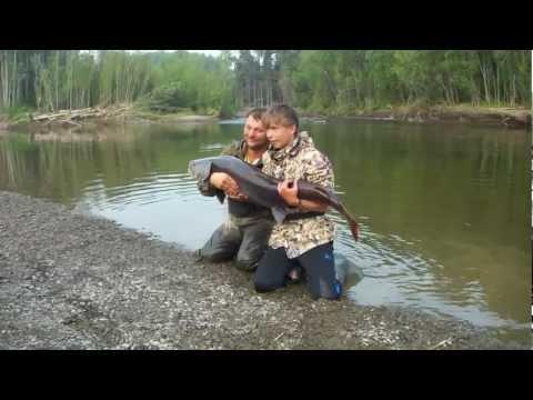 рыбалка пруд обрез