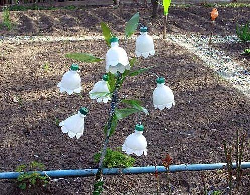 Поделки для сада и огорода из бутылок